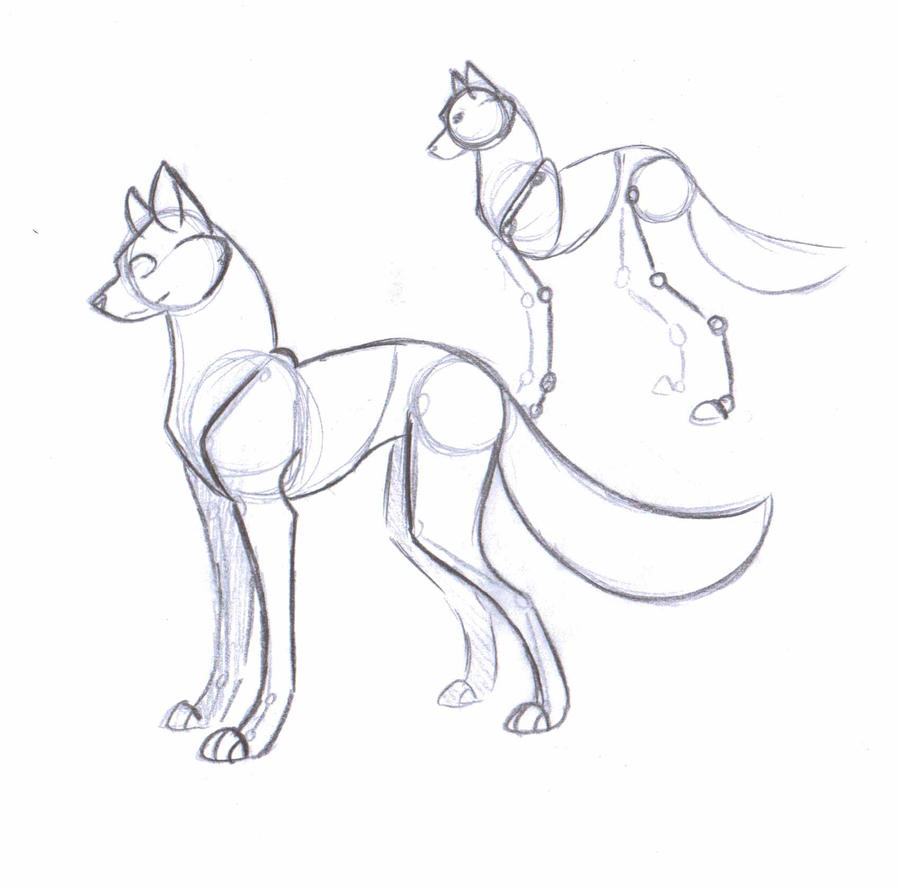 Dog Anatomy Ref by NekoZdemon on DeviantArt