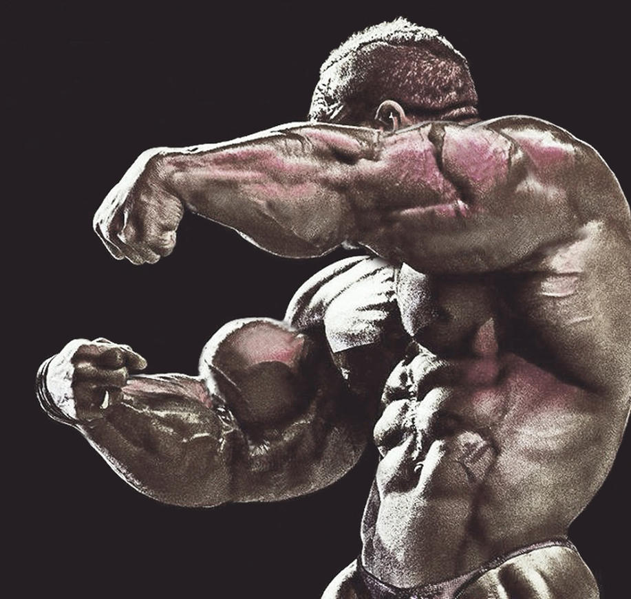 Roelly Wrap by xenonophile