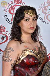 2016 Rose City Comic Con 325 by Darrian-Ashoka