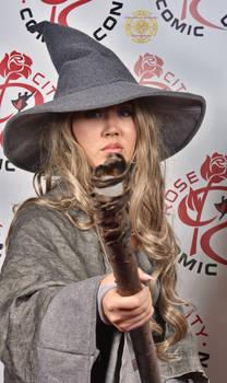 2016 Rose City Comic Con 802
