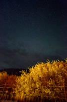 Starry Starry Night by ColinPortfolio