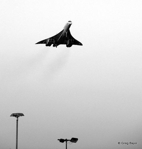 Concorde by gregbajor