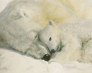 Polar Bear - Mother's Love by evomind