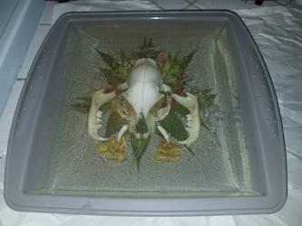 Pussy Bone WIP 3