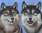 Lakota and Arapaho by Artistic-Gypsy
