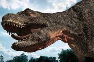 DinosaursForeva's Profile Picture