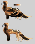 Australian Gryphon