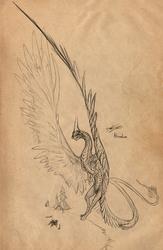 Ahnre sketch