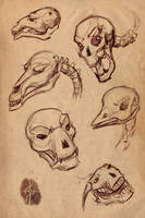 Skull Playsketches