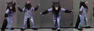 Silver Willows - Werewolf Form