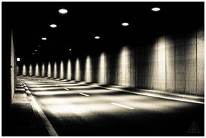 follow the light by theVolucris