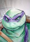 Turtle Power Hour