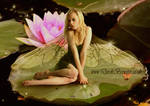 Water Lily Fairy by Pygar