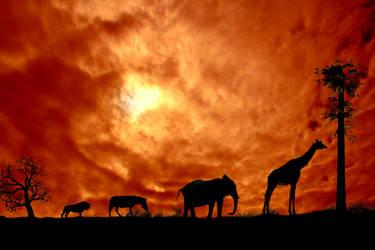 African Plain by Pygar