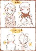 Love Overload