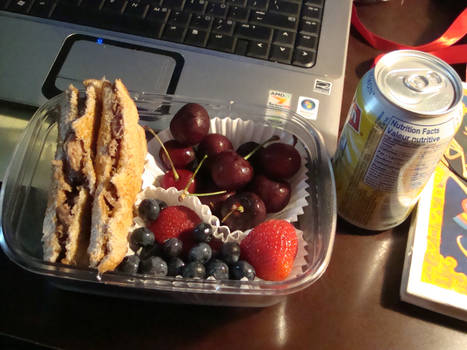 Meat and Berry Bento