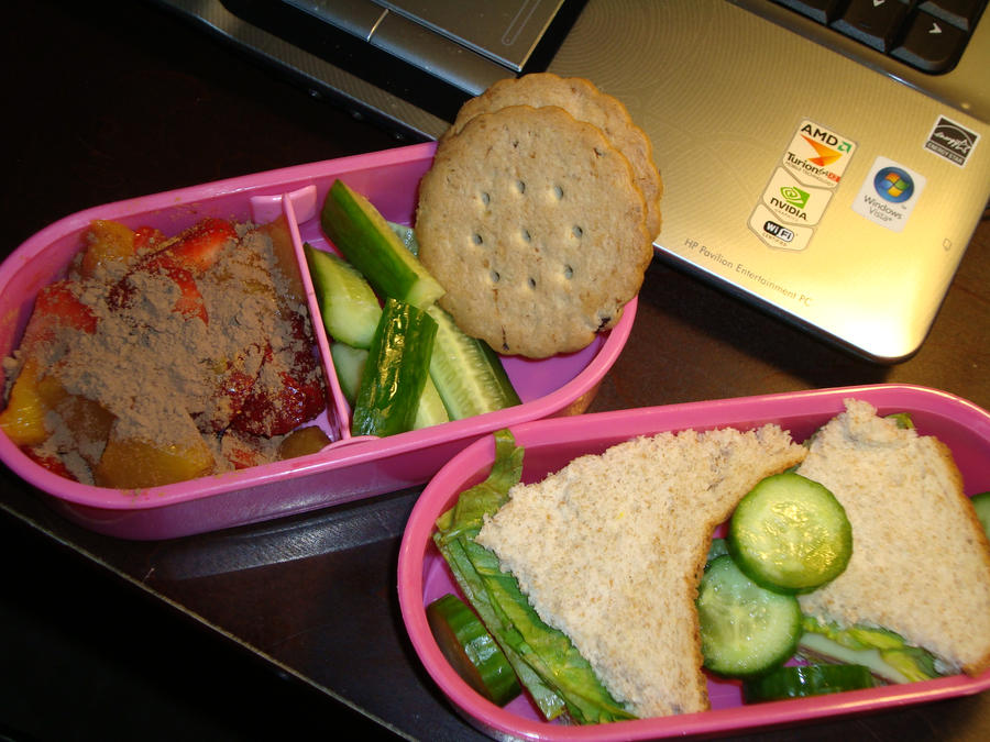 Summer Bento 2 by AtticusBlackwolf