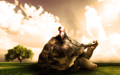 Riding the great tortoise