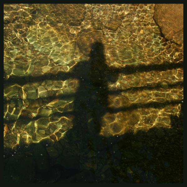 greychampion's Profile Picture