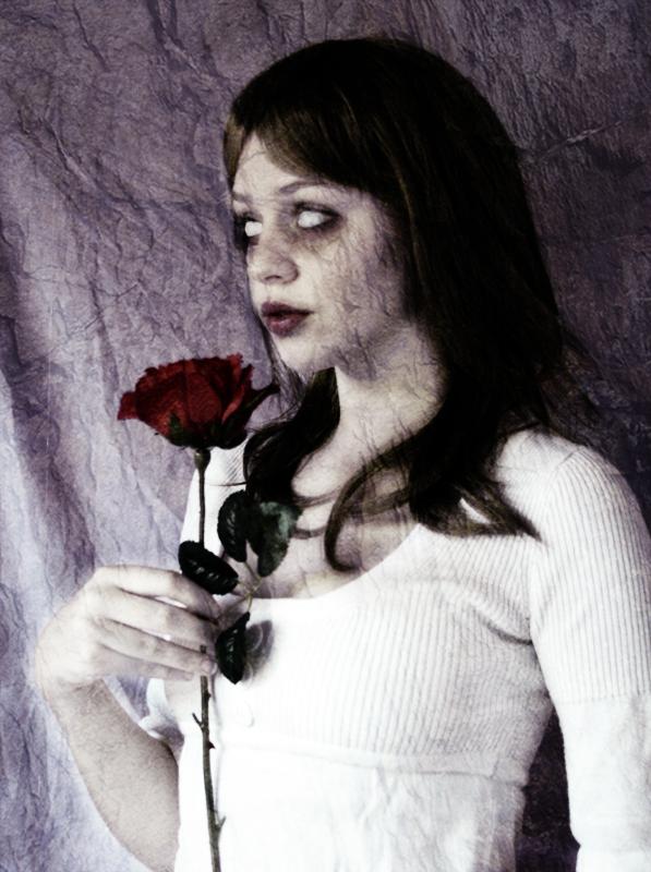 Dark rose by kamy-ska