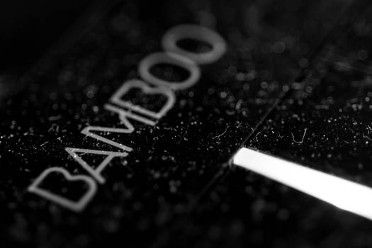 [00 021] Bamboo