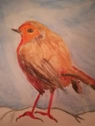 Robin, version 2