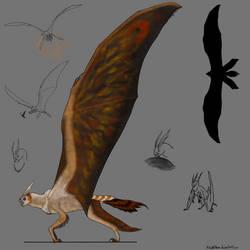 Papilliomimus magnificens (female)