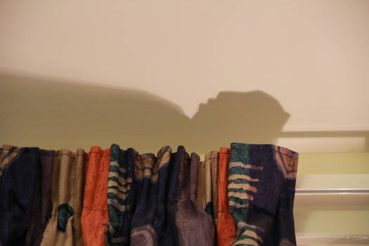 The Curtain Man