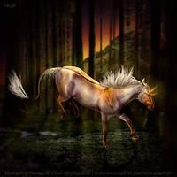 HEE || Horse Avatar | Golden Light by skystream11