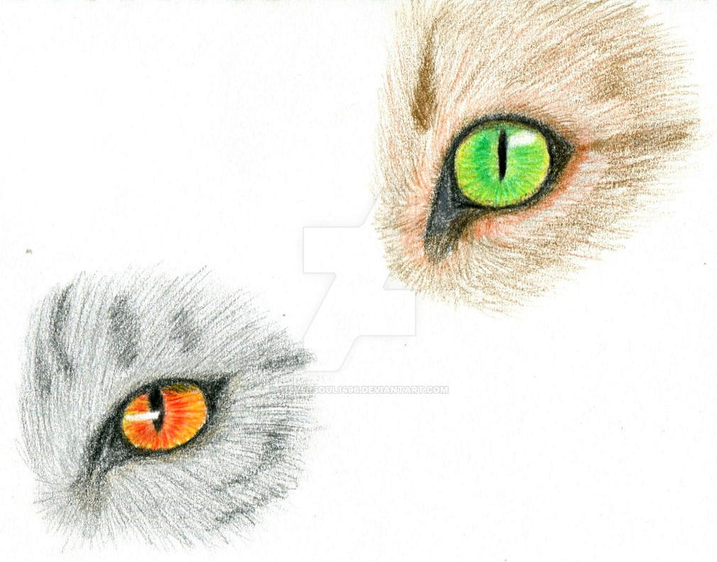 Cat Eyes by SilverSoul1496