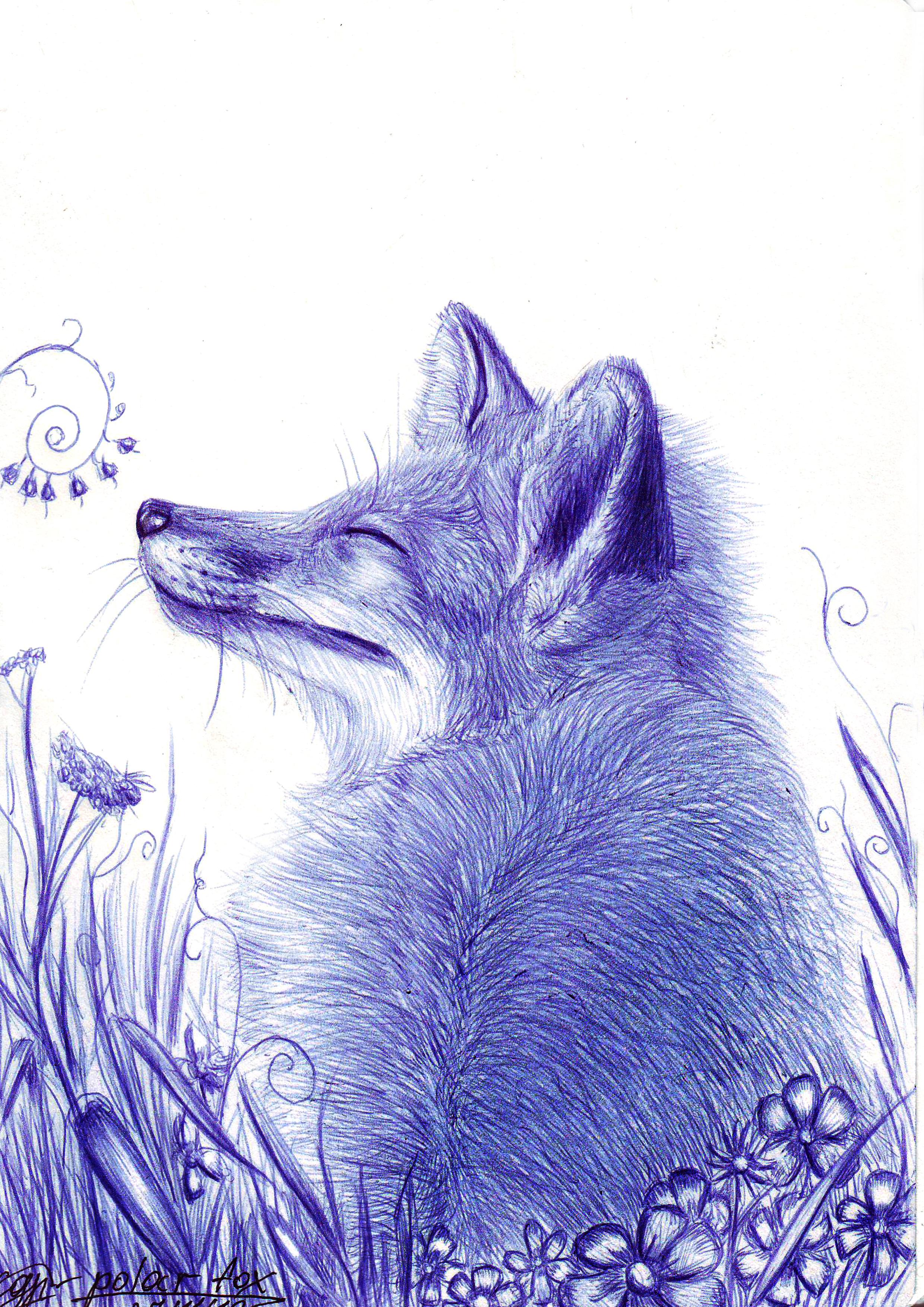 Fox in nature by SvPolarFox