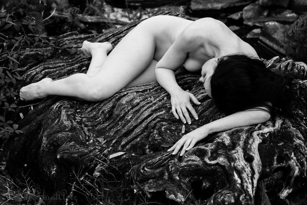 lost in the bush by GazzaA