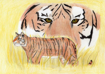 eye of the tiger by Farkas64