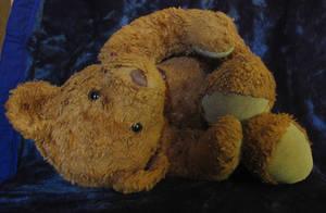 Teddy Bear.1_Mind-Matter by Mind-Matter