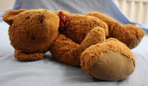 Discarded Bear.3_Mind-Matter