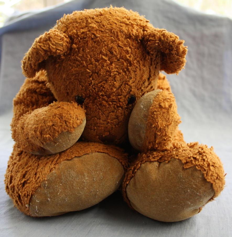 Discarded Bear.6_Mind-Matter by Mind-Matter