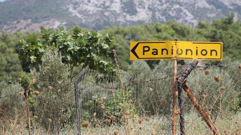 Картинки по запросу панионион
