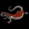 Red Salamander by Issora