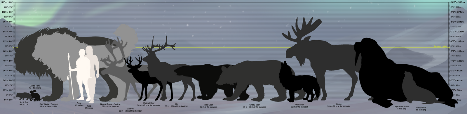 Elephant seal size compared too many fish dating site 3