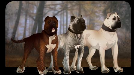 Boofy Doggos by Tauriiga