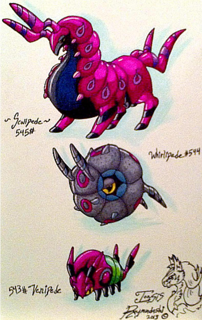 Traditional Scolipede evolutionary chart draw by ...