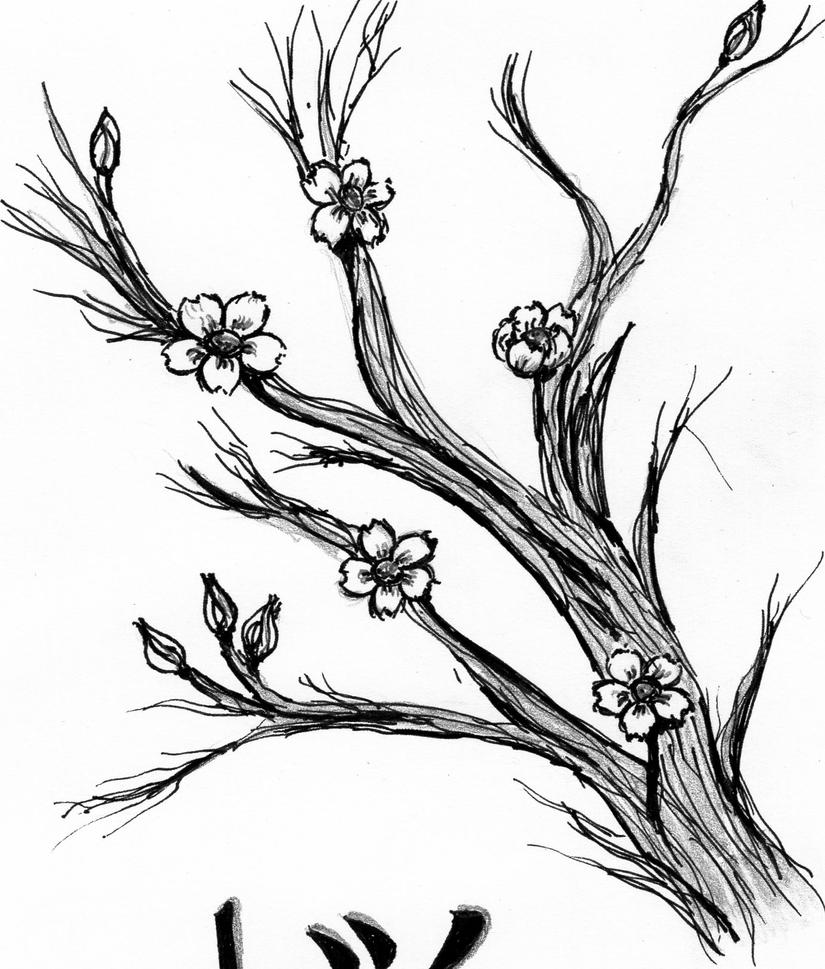 Japanese cherry blossom tree coloring coloring pages for Japanese art coloring pages