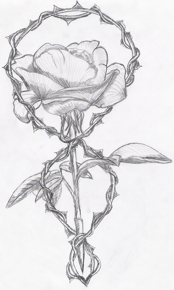 Tattoo rose and thorn by reeachan on deviantart for Rose with thorns tattoo