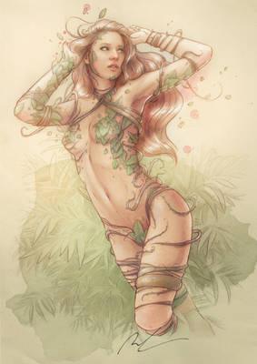 Ivy Color