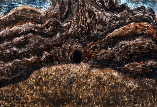 From Page 2 - Big Tree  Grass