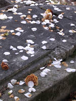 All the love by chon-chan