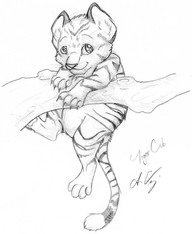 Tiger Line Drawing Easy : Tiger cub by naoki wolf on deviantart