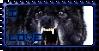 Wolf Stamp by remmus110203