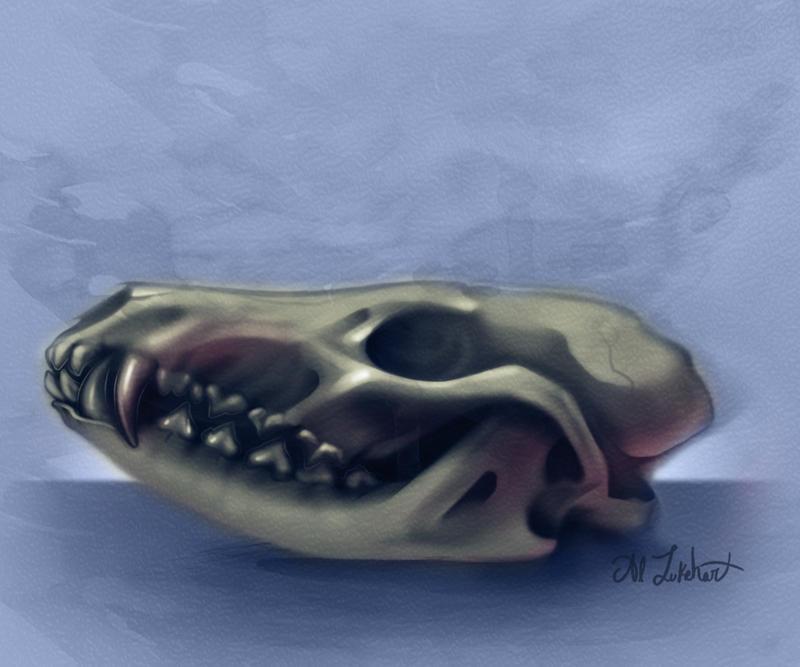 [Image: fox_skull_study_by_justjingles-d6oyuw8.jpg]
