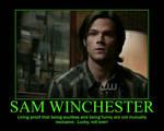 Soulless Sam